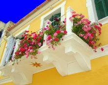 koši ziedi balkona interjerā uz starpliku dizaina foto