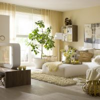 gaiša eko stila istabas attēls