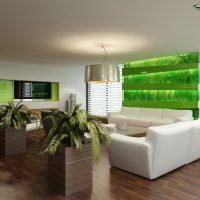 skaists eko istabas dizaina attēls
