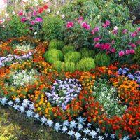 création inhabituelle du design d'une résidence d'été avec photo de fleurs