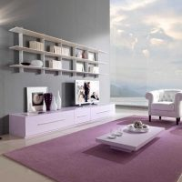 tumši rozā krāsas kombinācija virtuves interjerā ar citām fotoattēla krāsām