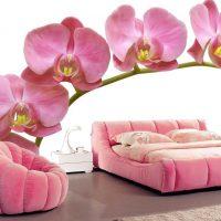 gaiši rozā kombinācija guļamistabas stilā ar citu krāsu attēlu