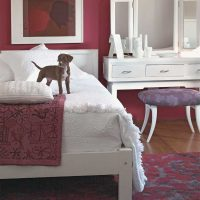spilgti rozā kombinācija viesistabas dekorā ar citām fotoattēla krāsām
