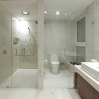 vannas istabas oriģinālā dizaina versija dzīvokļa attēlā