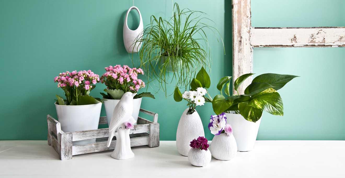 skaista interjera dekorēšanas variants līdz 8. martam