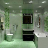 vannas istabas neparastā dizaina versija dzīvokļa attēlā