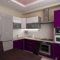 virtuves attēla spilgta stila pielietošanas iespēja