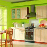 virtuves dizains ar gaišu interjera logu