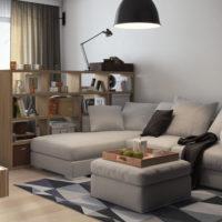 conception d'un appartement d'une pièce d'une superficie de 36 m