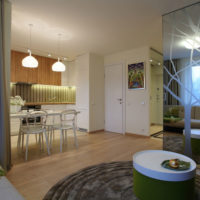 intérieur d'un appartement d'une chambre 36 m² idées idées