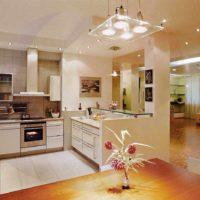 version du style lumineux du plafond dans la photo de la cuisine