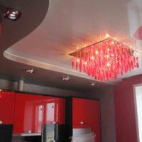 un exemple d'un style inhabituel d'une image de plafond de cuisine