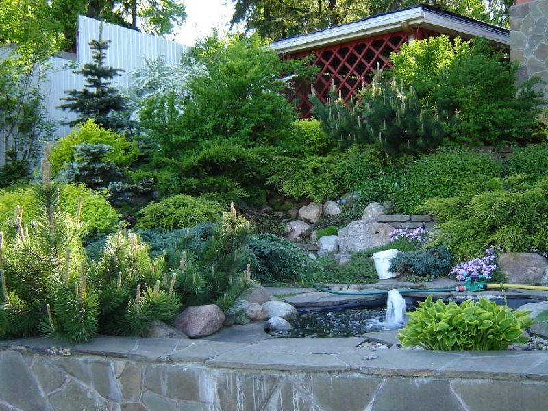 Alpu stila lauku dārza dizains