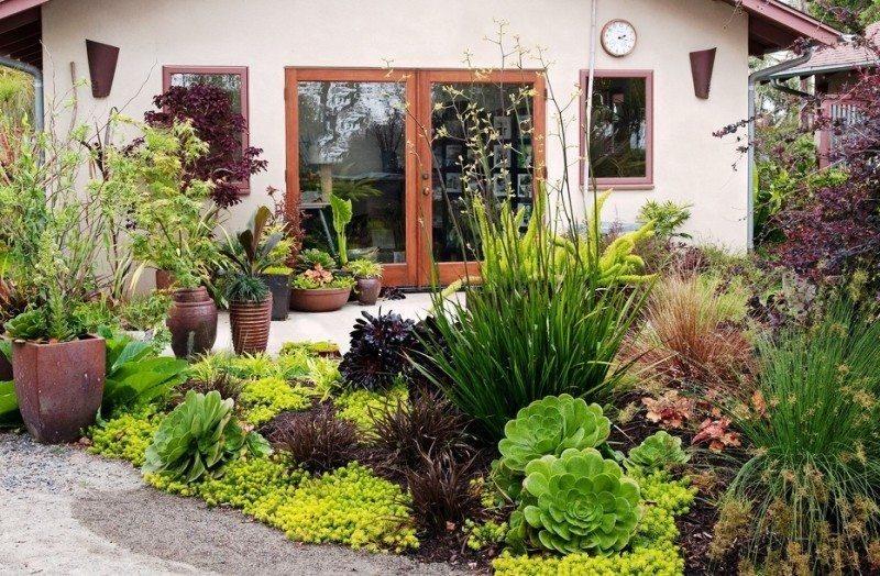 Puķu dobe ar dekoratīviem daudzgadīgiem augiem un ziediem lauku mājas priekšā