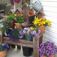 Puķu puķes dārza noformējumā