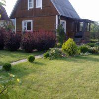Zaļš zāliens lauku mājas priekšā