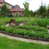 Dārzeņu dārzs vasarnīcas ainavā