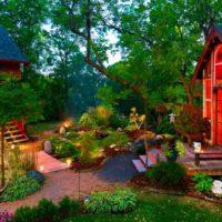 Lauku dārza košās krāsās