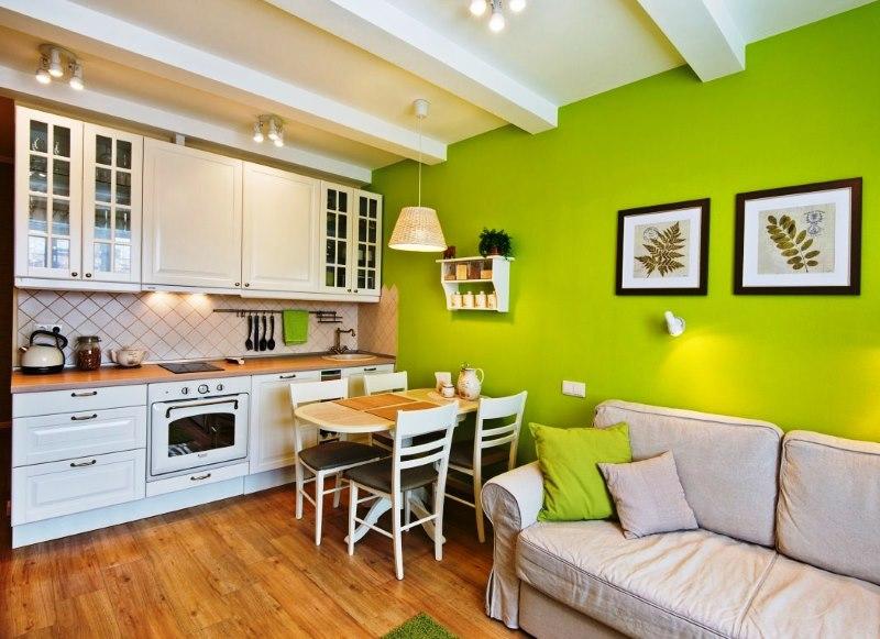 Intérieur de cuisine combiné de couleur blanc-vert