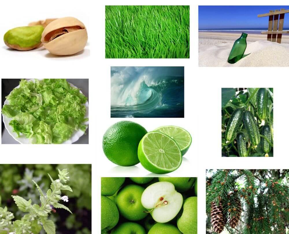 Exemples de différentes nuances de vert