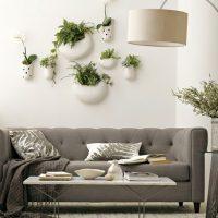 Dzīvi augi kā sienas dekors