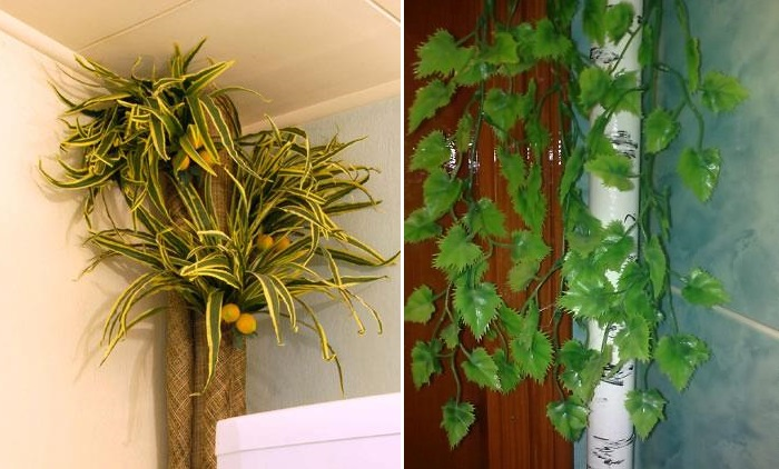 Decoration by plants of the heating riser in the apartment
