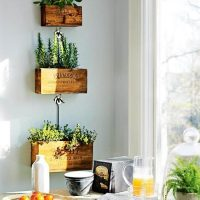 Tiroirs faits maison pour plantes d'intérieur