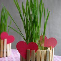 Décorations de pinces à linge simples