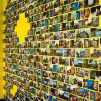 Dzeltenā siena ar krāsainām fotogrāfijām