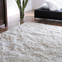 Viegls paklājs ar garu kaudzi