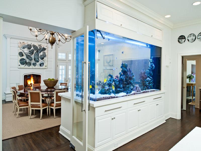 Zonēšana virtuve-dzīvojamā istaba ar akvāriju