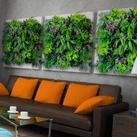 Moduļu gleznas no dzīviem augiem