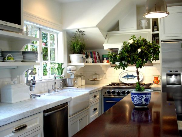 Lors du choix des fleurs pour la cuisine, il convient de garder à l'esprit que peu d'entre elles résistent aux chutes de température constantes, à la fumée et à la vaporisation abondante.