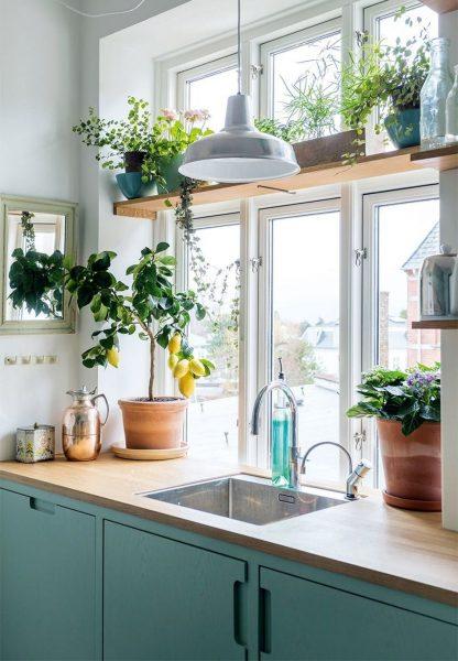 Avant d'acheter des plantes, demandez-vous si vous pouvez les arranger, en tenant compte de leurs caractéristiques.