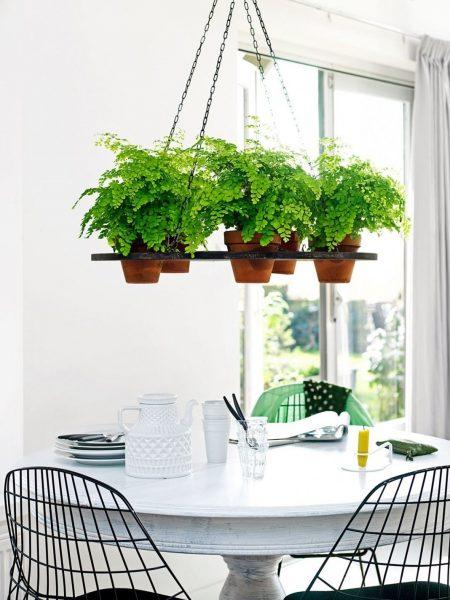 Les fleurs suspendues s'intègrent harmonieusement à l'intérieur de la cuisine et occupent un minimum d'espace