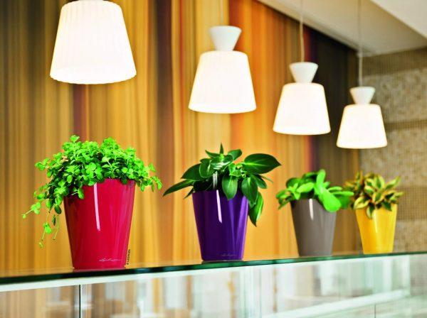 S'il n'y a pas assez de lumière dans la cuisine, vous pouvez toujours utiliser des sources d'éclairage supplémentaires.