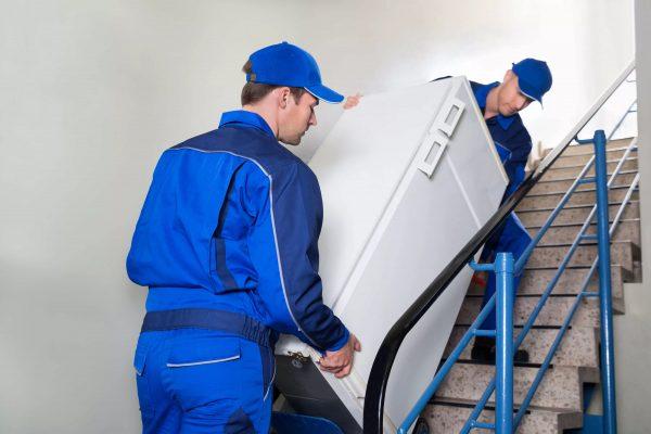 quand puis-je allumer le réfrigérateur après le transport et comment le faire correctement?