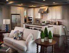 Među idejama zoniranja kuhinje i dnevnog boravka ističu se originalni načini uz pomoć dekora i dodataka.