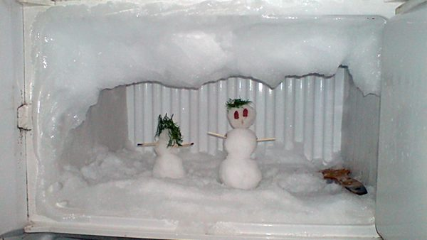 Interested in how to quickly defrost a refrigerator?